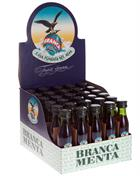 Fernet-Branca from Italy